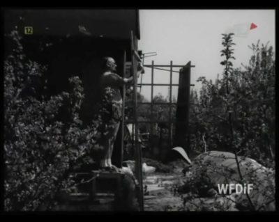 Każdy działkowiec wie, że bez telewizji ani rusz. Trwa więc montaż anteny, aby po całym dniu ciężkiej pracy obejrzeć Dziennik. Albo tę kronikę pokazującą życie warszawskich działkowców. Kadr z kroniki PKF 15/82.