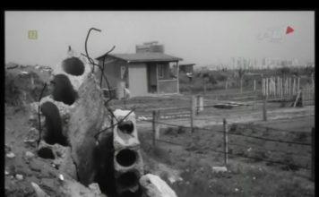 Solidna altanka już cieszy oko, jest ozdobą ogrodów działkowych za Centrum Onkologii, którego budynek wychodzi zza domku. Kadr z kroniki PKF 15/82.