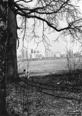 Patrzymy spod drzew przed Lasem Kabackim na północno-zachodni koniec osiedla przy Kazury (po lewej nr 18). Fot. Andrzej Kubik