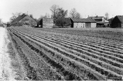 Po lewej stronie zdjęcia ulica Imbirowa w kierunku skarpy. U jej wylotu stojący do dziś krzyż. A na zaoranym polu wyrosło osiedle segmentów. Fot. Andrzej Kubik