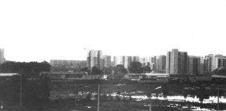 Początki bazarku przy Lanciego. Za ulicą wielkie jezioro pełne żab i zaplecze budowy metra. Nad. Marcin Darmos