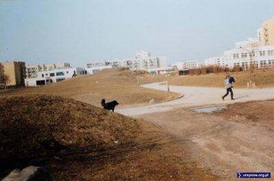 Widok z miejsca, gdzie dziś zaczyna się teren uczelni Vistula, na górkę leżącą między ulicami Zamiany i Stokłosy. Fot. Andrzej N.