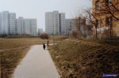 Po prawej stronie blok przy Zamiany 9, pies idzie na zachód, w kierunku przesmyku między blokami przy Stokłosy 2/4 oraz 7. Dziś ten widok przesłania uczelnia Vistula. Fot. Andrzej N.