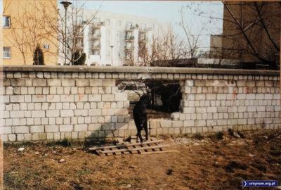 Pies przeskakuje przez dziurę w murze, którą można było przejść z podwórka bloku Zamiany 11 na teren ogrodu dawnego żłobka przy Zamiany 13, który to adres zasłynął w związku z napadem stulecia. Fot. Andrzej N.