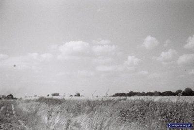 Widok z pól Wyczółek na wschód, w kierunku powstającego Ursynowa - o prowadzonej wielkiej budowie świadczą wystające ponad trawy dźwigi. Zdjęcie z kolekcji Kazimierza Laskowskiego.